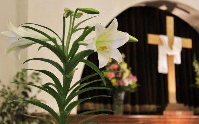 A Lenten Reflection: Life is a Gift